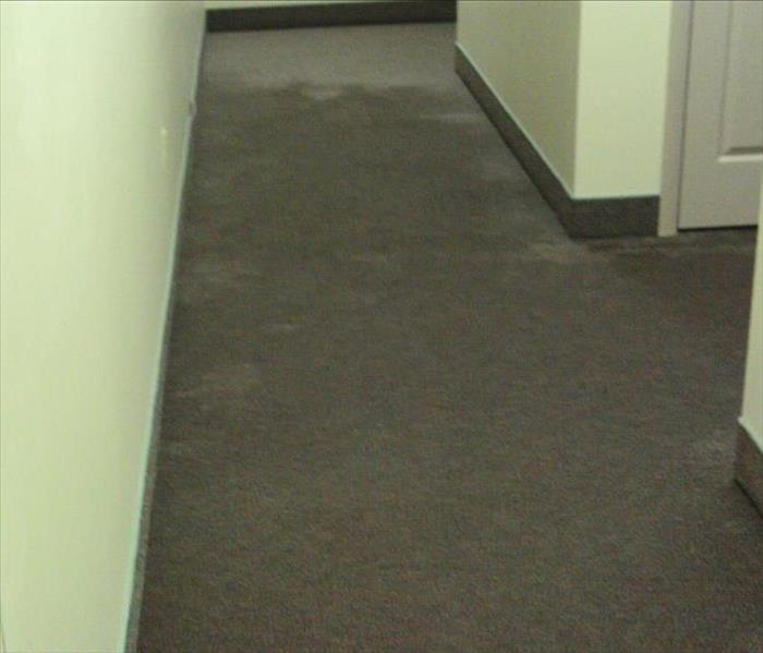 wet gray carpet in a hallway