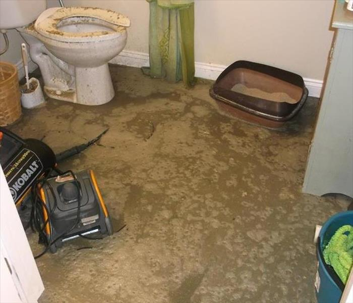 brown sewage water on floor of bathroom