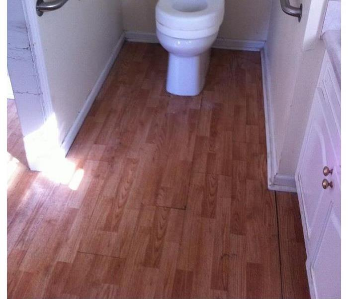 Residential bathroom with wet hardwood floor