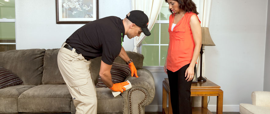 Panama City, FL carpet upholstery cleaning